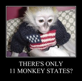 THERE'S ONLY  11 MONKEY STATES?