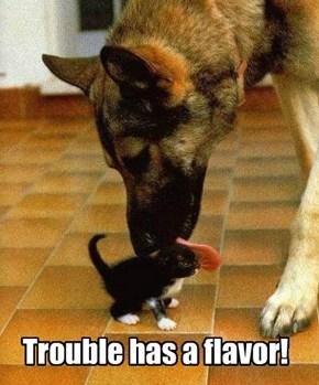 And it Tastes Like Cuteness!