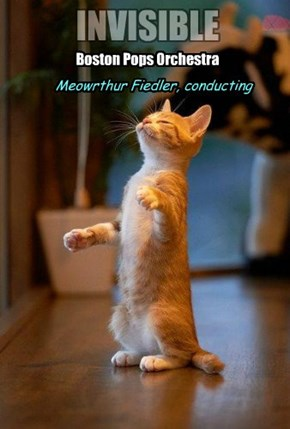 Meowrthur Fiedler, conducting