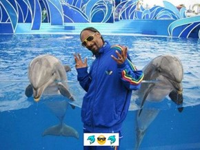 Snoop Is The Personification of The Cool Guy Emoji