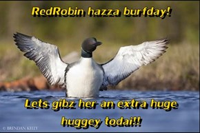 RedRobin hazza burfday!  Lets gibz her an extra huge huggey todai!!