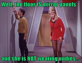 Well, the floor IS mirror panels  and she is NOT wearing undies...