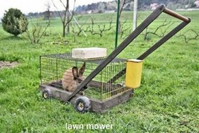 The Slowest Lawn Mower Ever