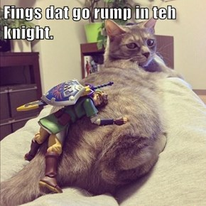 Fings dat go rump in teh knight.