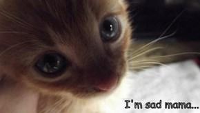 I'm sad mama...