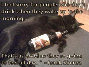 "I feel sorry for people who don't drink when they wake up in the morning,  That's as good as they're going to feel all day. "" ~Frank Sinatra"