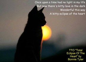 """Kitty Eclipse Of The Heart"" (TTO ""Total Eclipse Of The Heart"" by Bonnie Tyler)"