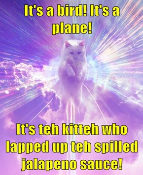 It's a bird! It's a plane!  It's teh kitteh who lapped up teh spilled jalapeno sauce!