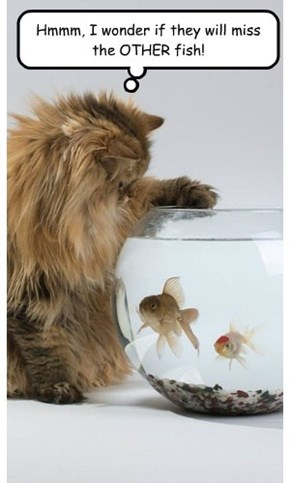 Hmmm, I wonder if they will miss the OTHER fish!