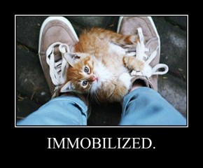 IMMOBILIZED.
