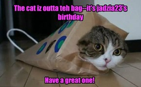 Caturday and ur birthday--awesome!