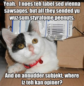 Yeah.   I noes teh label sed vienna sawsages, but all they sended yu wuz sum styrafome peenuts.