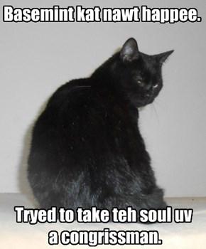 Basemint kat nawt happee.