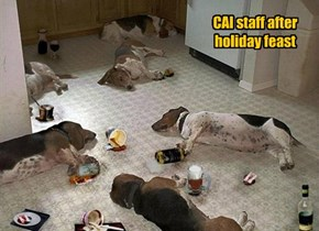 CAI staff after holiday feast