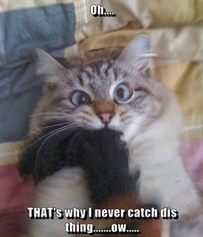 Oh....  THAT's why I never catch dis thing.......ow.....