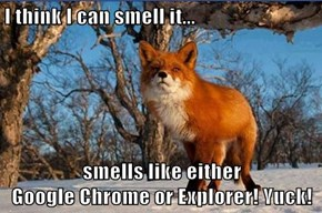 I think I can smell it...  smells like either                                                         Google Chrome or Explorer! Yuck!