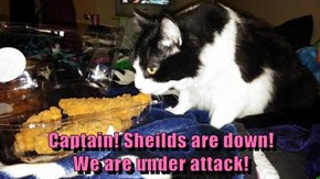 Captain! Sheilds are down!                                          We are under attack!