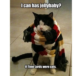 I can has jellybaby?