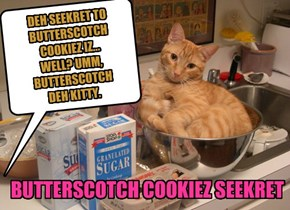 DEH SEEKRET TO BUTTERSCOTCH COOKIEZ IZ... WELL? UMM,  BUTTERSCOTCH  DEH KITTY.