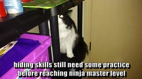 hiding skills still need some practice                          before reaching ninja master level