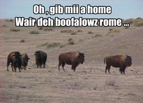 Oh , gib mii a home Wair deh boofalowz rome ...