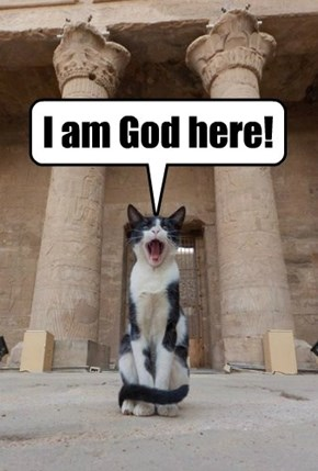 All hail Pharoh Mittens I!