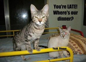 You're LATE! Where's our dinner?