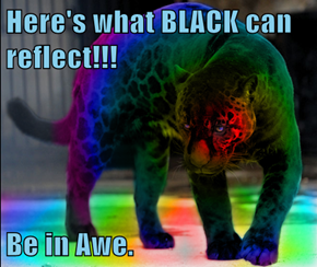Here's what BLACK can reflect!!!  Be in Awe.