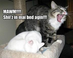 MAWM!!!! Shii'z in mai bed agin!!!