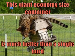 This giant economy size container  iz much better than a single burd