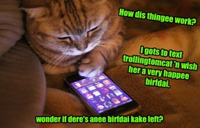 Hav a great birfdai, trollingtomcat!