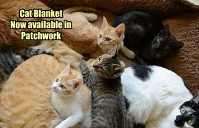 Cat Blanket Now available in Patchwork