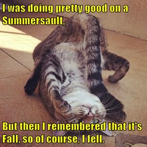 I was doing pretty good on a Summersault,   But then I remembered that it's Fall, so of course, I fell.