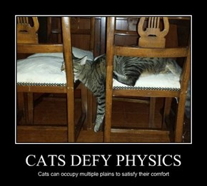 CATS DEFY PHYSICS
