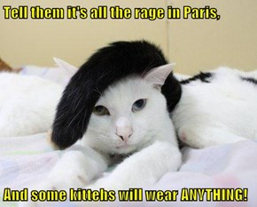 Tell them it's all the rage in Paris,  And some kittehs will wear ANYTHING!