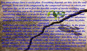 You must always have a secret plan. Everything depends on this: it is the only question. So as not to be conquered by the conquered territory in which you lead your life, so as not to feel the horrible weight of inertia wrecking your will and bending you