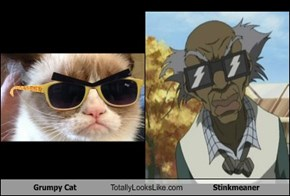 Grumpy Cat Totally Looks Like Stinkmeaner