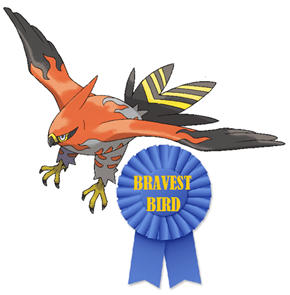 You get a Gold Star, Competitive Talonflame