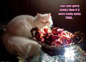 Your poh-purry stinks! Now if it were made outta TUNA...