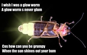 Ai wish ai was a glow worm