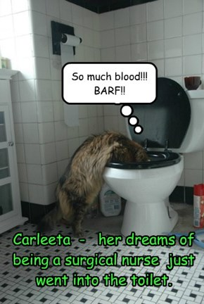 Carleeta  -   her dreams of being a surgical nurse  just went into the toilet.