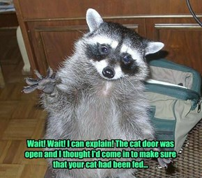 Wait! Wait! I can explain! The cat door was open and I thought I'd come in to make sure that your cat had been fed...