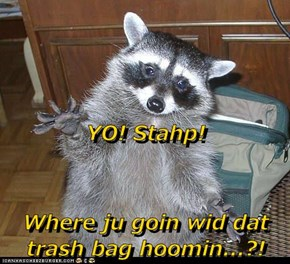 YO! Stahp! Where ju goin wid dat trash bag hoomin...?!