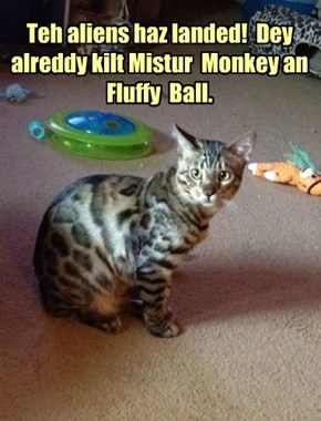 Teh aliens haz landed!  Dey alreddy kilt Mistur  Monkey an Fluffy  Ball.