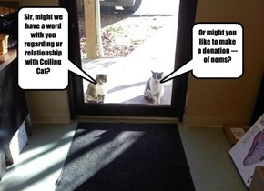 Sir, might we have a word with you regarding ur relationship with Ceiling Cat?