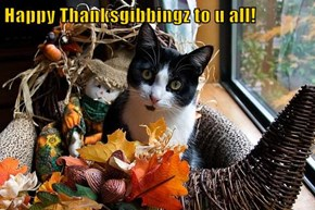 Happy Thanksgibbingz to u all!
