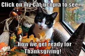 Click the Image Below to see 10 Cats Enjoying Thanksgiving!