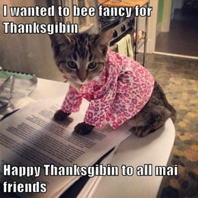 I wanted to bee fancy for Thanksgibin  Happy Thanksgibin to all mai friends