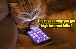 The reason why you get high internet bills !