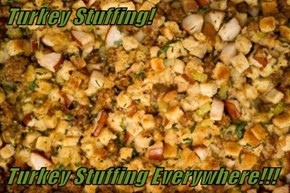 Turkey Stuffing!   Turkey Stuffing Everywhere!!!